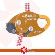Backup Device Beal Monitor