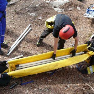Larkin Frame Rescue